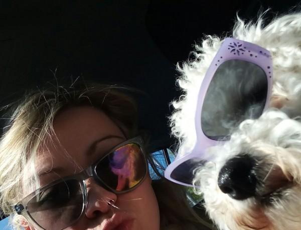 bild Hund und Frauchen mit Sonnenbrillen